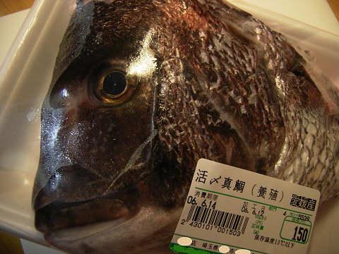 いい顔の鯛
