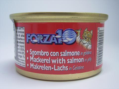 フォルツァ10メンテナンス サバ&サーモン