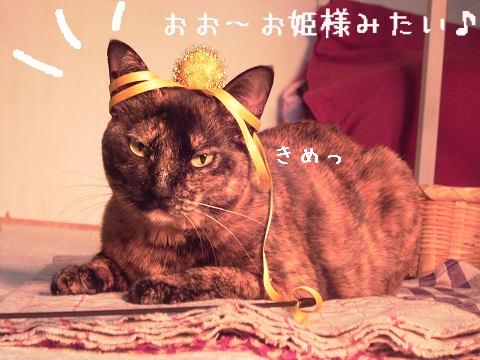 ウニ姫の完成♪