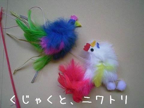 羽と毛のおもちゃ