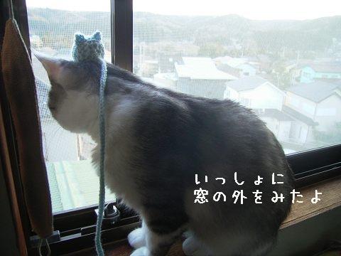 のったー^o^/