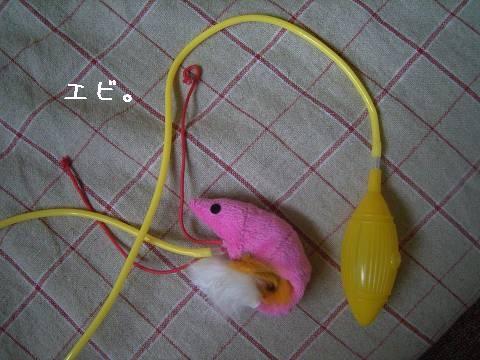 エビのおもちゃ